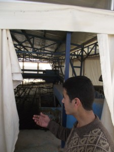 "jericho, ""refugee camp"", ""drinking water"", UNRWA, ""water treatment plant"""