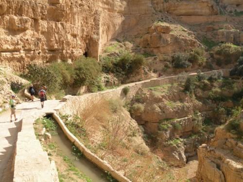 """jericho, """"wadi qelt"""", irrigation, water"""