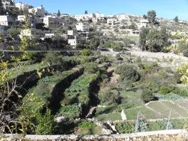 Celebrating the terraced landscapes in Battir