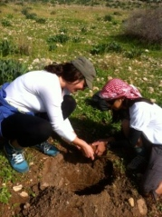 Students plant trees at the Sharhabil bin Hassneh EcoPark