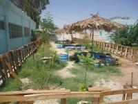 Zanoubia Girls' School