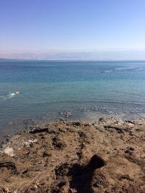 Dead Sea Swim
