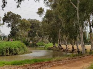 Yarkon and Jordan River Basins